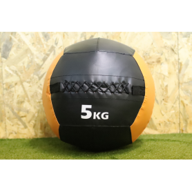 Wall Ball PRO Color 5kg