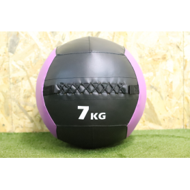 Wall Ball PRO Color 7kg