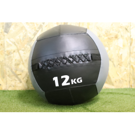 Wall Ball PRO Color  12kg